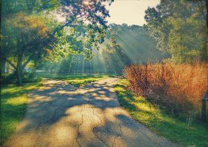 Sunrise at the Sanctuary